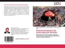 Bookcover of Ectomicorrización de suelo agrícola forestal