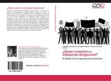 Portada del libro de ¿Poder colectivo o elitización dirigencial?