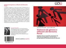 Violencia de género e inflación del Derecho Penal的封面
