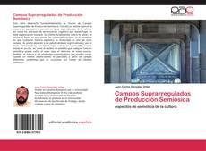 Copertina di Campos Suprarregulados de Producción Semiósica