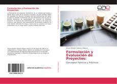 Bookcover of Formulación y Evaluación de Proyectos: