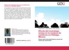 Couverture de Efecto del muérdago enano en la madera de coníferas en Hidalgo, México
