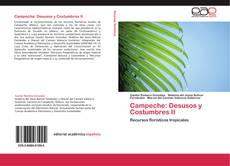 Обложка Campeche: Desusos y Costumbres II