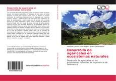Borítókép a  Desarrollo de agaricales en ecosistemas naturales - hoz