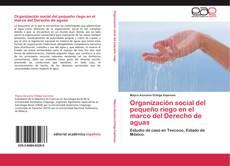 Buchcover von Organización social del pequeño riego en el marco del Derecho de aguas