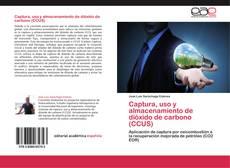 Bookcover of Captura, uso y almacenamiento de dióxido de carbono (CCUS)
