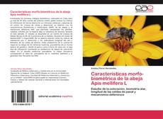 Bookcover of Caracteristicas morfo-biométrica de la abeja Apis mellifera L