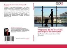 Bookcover of Programa de Re-inserción Social para Ex-convictos