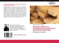 Buchcover von Alianzas públicas y privadas para promover el desarrollo sostenible