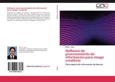 Bookcover of Software de procesamiento de información para riesgo crediticio