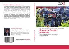 Modelo de Gestión Ambiental的封面