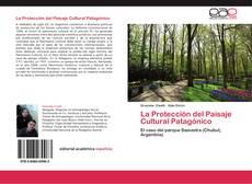 Portada del libro de La Protección del Paisaje Cultural Patagónico