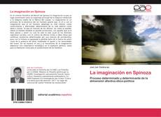 Buchcover von La imaginación en Spinoza