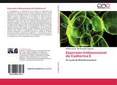 Bookcover of Expresión tridimensional de Cadherina E