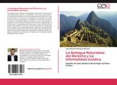 Bookcover of La Ambigua Naturaleza del Derecho y La Informalidad Jurídica