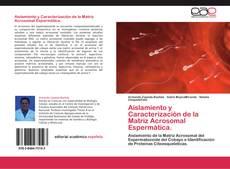 Bookcover of Aislamiento y Caracterización de la Matriz Acrosomal Espermática.