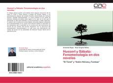 Copertina di Husserl y Sábato: Fenomenología en dos novelas