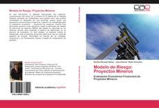 Bookcover of Modelo de Riesgo: Proyectos Mineros