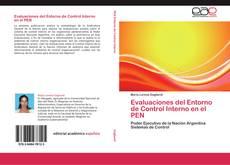 Bookcover of Evaluaciones del Entorno de Control Interno en el PEN