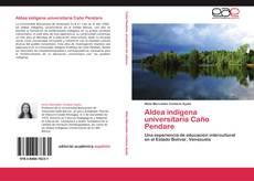 Copertina di Aldea indígena universitaria Caño Pendare