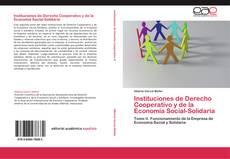 Buchcover von Instituciones de Derecho Cooperativo y de la Economía Social-Solidaria