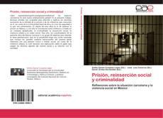 Обложка Prisión, reinserción social y criminalidad