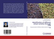 Bookcover of Identification of different wheat varieties through FTIR