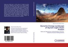 Bookcover of Dynamic Energy Landscape of Dynein Light Chain Protein