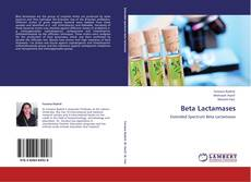 Bookcover of Beta Lactamases