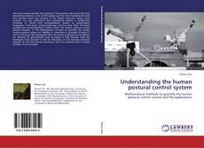 Understanding the human postural control system的封面