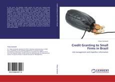 Copertina di Credit Granting to Small Firms in Brazil