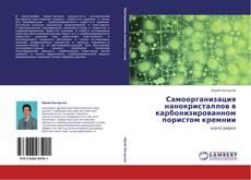 Copertina di Самоорганизация нанокристаллов в карбонизированном пористом кремнии