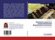 Bookcover of Краевые задачи в моделировании формования волокон