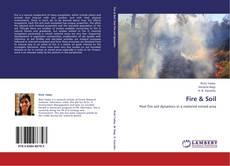 Buchcover von Fire & Soil