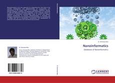 Nanoinformatics的封面