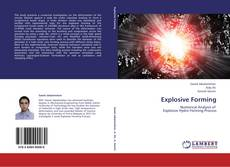 Bookcover of Explosive Forming