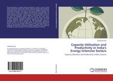 Portada del libro de Capacity Utilization and Productivity in India's Energy Intensive Sectors