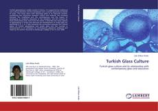 Couverture de Turkish Glass Culture