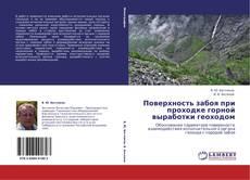 Bookcover of Поверхность забоя при проходке горной выработки геоходом