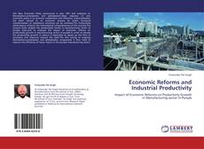 Capa do livro de Economic Reforms and Industrial Productivity