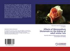 Обложка Effects of Monosodium Glutamate  on the kidney of adult wistar rats