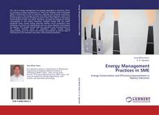 Bookcover of Energy Management Practices in SME