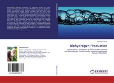Biohydrogen Production的封面