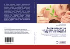 Copertina di Воспроизводство основного капитала в современной России