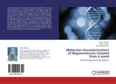 Bookcover of Molecular characterizations of Begomoviruses Isolated from a weed