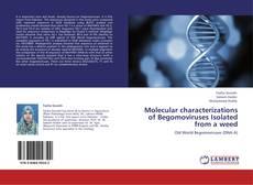 Обложка Molecular characterizations of Begomoviruses Isolated from a weed