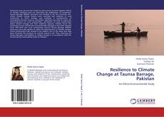 Buchcover von Resilience to Climate Change at Taunsa Barrage, Pakistan