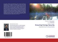 Capa do livro de Ensuring Energy Security