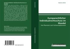 Europarechtlicher Individualrechtsschutz im Wandel的封面