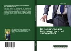 Die Prozessführung im Sanierungsverfahren mit Eigenverwaltung的封面